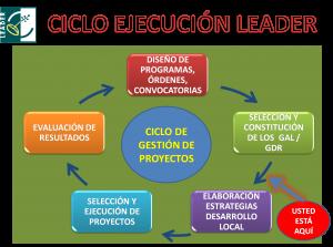 Ciclo ejecucion LEADER