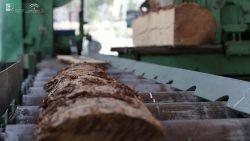 madera foto 2